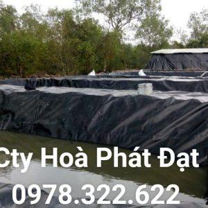Địa chỉ cung cấp và thi công vải bạt chống thấm nước tại TP Cà Mau, bán màng chống thấm HDPE lót ao hồ tại TP Cà Mau chính hãng giá rẻ