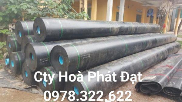Địa chỉ cung cấp và thi công vải bạt chống thấm nước tại TP Huế, bán màng chống thấm HDPE lót ao hồ tại TP Huế chính hãng giá rẻ